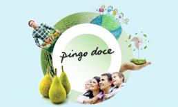 responsabilidade social do pingo doce: os 5 pilares da Comunidade Pingo Doce