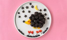 Ouriço de fruta