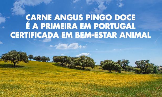 Carne Angus Pingo Doce é a 1ª certificada em bem estar animal
