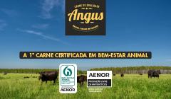 A primeira carne Angus em Portugal certificada em bem-estar animal