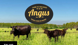 Carne Angus Nacional Pingo Doce